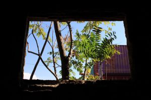 abandoned building by Fortisinprocella