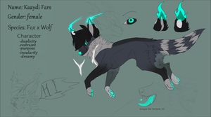 Kaaydi ref sheet by onzuna