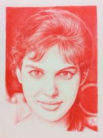 BIC Ballpoint pen drawing of Claudia Cardinale by chaseroflight
