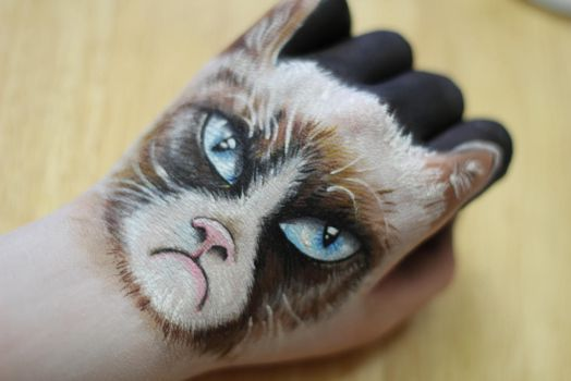 Grumpy Cat Hand Art by KlairedeLys