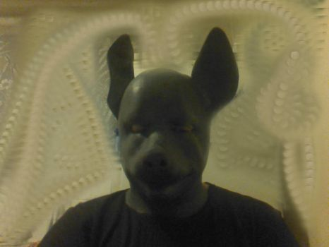 New mask Dog (nouveau masque de chien) by nozica