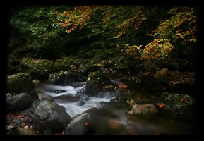 Autumnal by lucias-tears