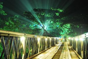 Light Play 'Updated' by natureblue