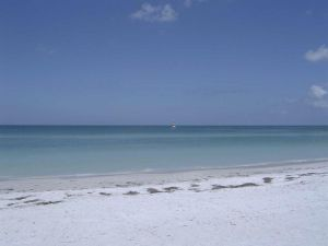 Beautiful Gulf In Sarasota by ernurse64
