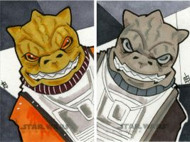 Star Wars Chrome Perspectives - Bossk by 10th-letter