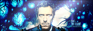 DR HOUSE by romance96
