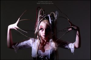 . within the sleepless woods . by Countess-Grotesque