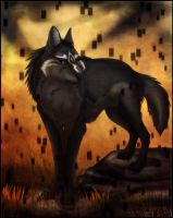 Dark Wolf of Twilight by Acaris