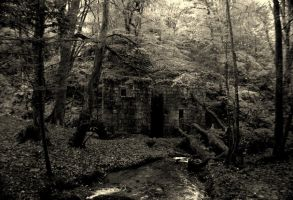 Mill House 4 by truesonofodin