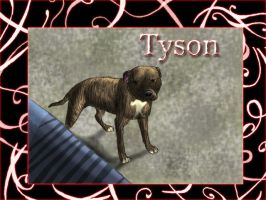 Vovve request: Tyson by Sugarseme