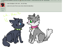 SMALLPAW Dare 2: flirting not so like a boss by ask-female-scourge
