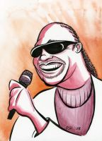 Stevie Wonder by Phostex