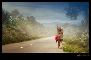 Road by vinayan