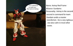 Character Profile: Astray Red Frame by Dield
