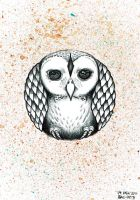 Owl Daily Drawing by bryancollins