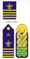 new Imperial Aquilaan Naval Aviation Ranks by Ienkoron