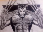 Wolverine by tat2tiger