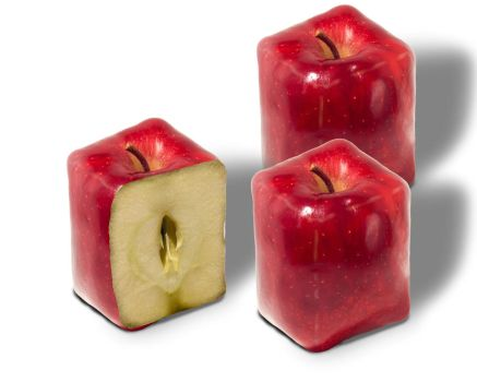 square apples by mortenwael