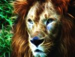 Lion on fire by charush