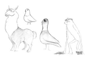 Animal Sketch Collection #1 by LorenzoSabia
