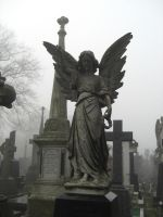 St Annes Cemetery 6 by Stock-Karr