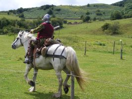 Border Reiver 30 by Axy-stock