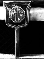 mg logo by wroquephotography