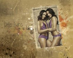 The Bella Twins wallpaper by StarstruckPS