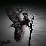 Raven Of The Devil by Ceylin123