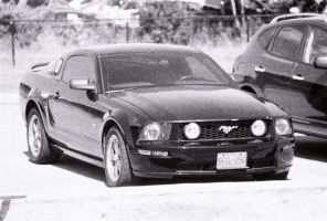 The Mustang by Neville6000