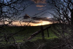 HDR at Knockagh - 1 by jfleck