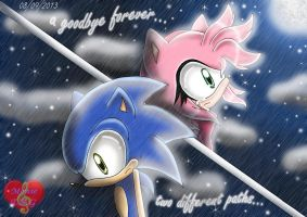Two different paths,a goodbye forever... by Monsethehedgehog