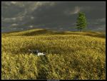 Field of Solitude by ArthurBlue