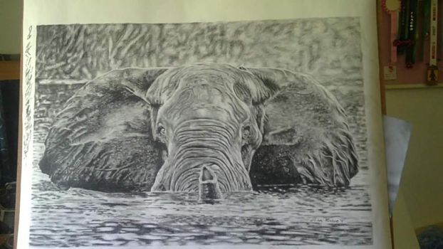 Charcoal Elephant by Okammie
