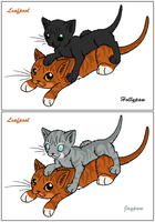 ThC - Leafpool's Apprentices by WildpathOfShadowClan