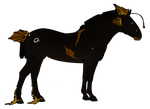 Melanocetequus import 10 by Lily-Pad-Stables