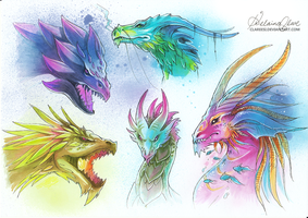 DRAGONS by Clareesi