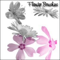 Flower Brushes by hanghuhn