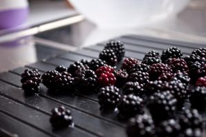 Blackberry Heaven by Kai--Photography