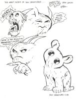 Bone- Rat Creature expressions by vcallanta