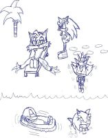 Sonic and Friends at the Beach by SonicMon