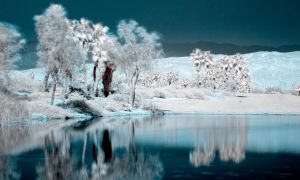 False Color Infrared by IsACoolGuy