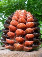 Pinecone by NAD-LifeOfficial