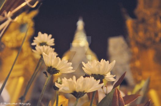 ShweDaGon Pagoda (Friday Corner) by phantommask