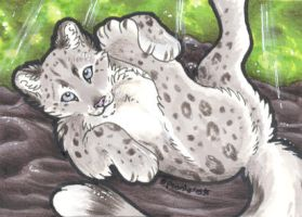 What'd ya say? - ACEO Trade by PoonieFox