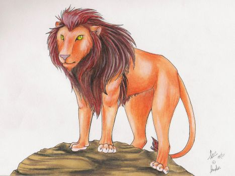 Lion scetch by Doualias