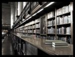 New York City Public Library by clairwitch