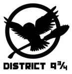 District 9 3/4 by hglover210
