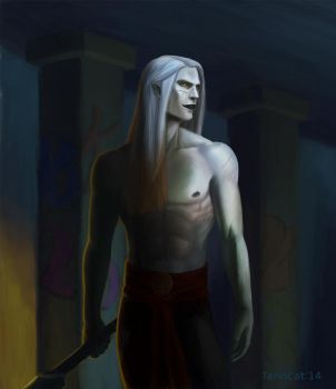 Nuada by TerinCat