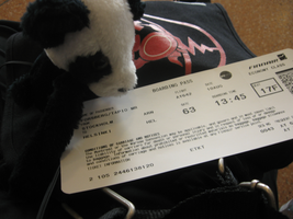 Panda the panda with ticket by melitooh